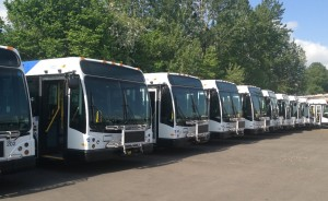 The first few buses of the 3200 fleet being prepped for TriMet service.