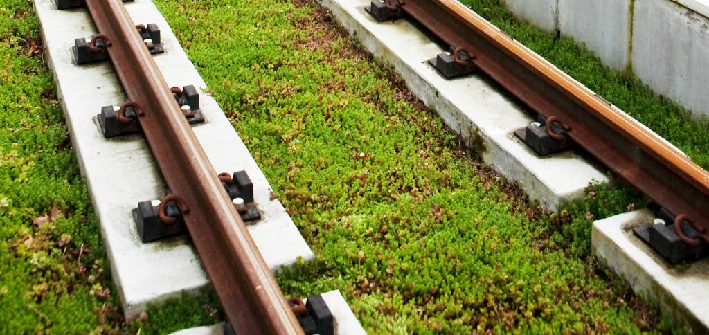 Eco-track on the MAX Orange Line